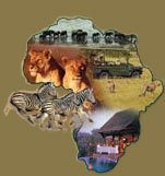 The Africa Adventure Companylogo