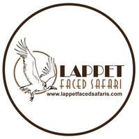 Lappet Faced Safarislogo