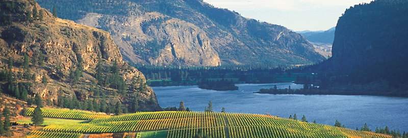 Yacht cruise